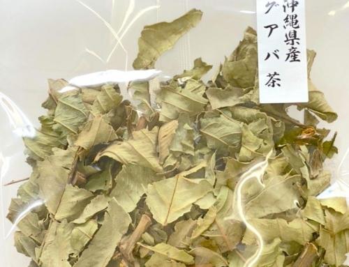 沖縄県産 グァバ茶