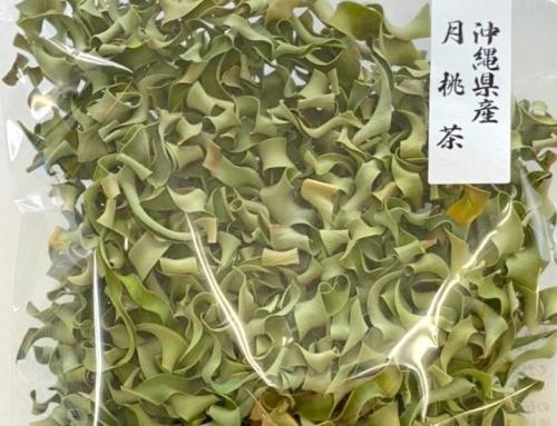 沖縄県産 月桃茶